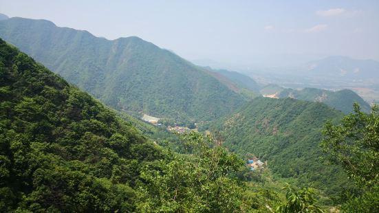 黃坪山生態旅遊區