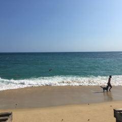 Playa Carrizalillo User Photo