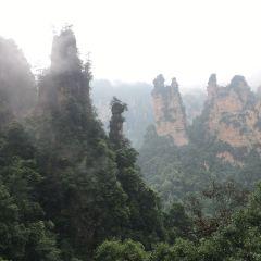 Zhangjiajie Grand Canyon User Photo
