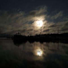 Frankfort Beach用戶圖片