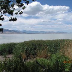 Great Salt Lake State Marina User Photo