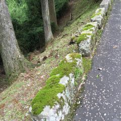 恩賜箱根公園のユーザー投稿写真