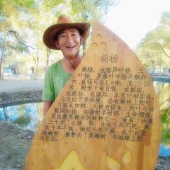 헤이허 옌린 관광단지 여행 사진
