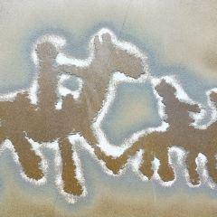 日土岩畫用戶圖片