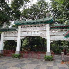 Chinese Garden User Photo