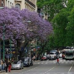 Avenida Santa Fe User Photo