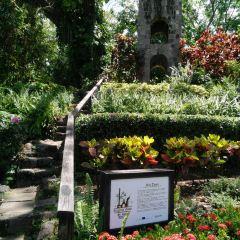 Caribelle Batik User Photo