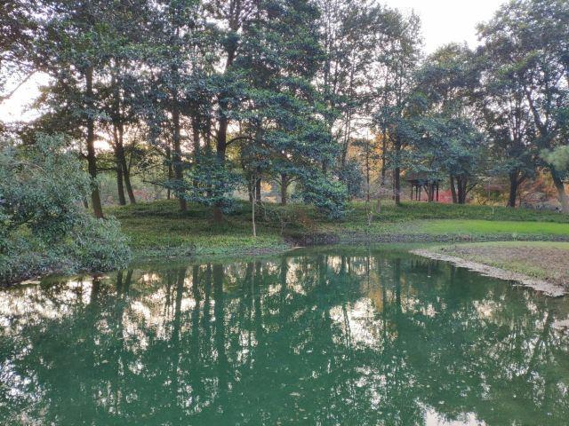 太子灣公園