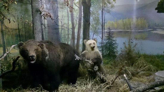 National Museum of The Republic of Bashkortostan