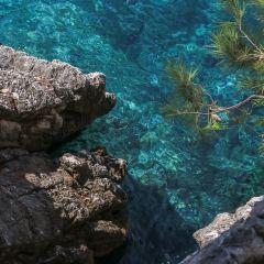 Crvena Glavica Beach用戶圖片