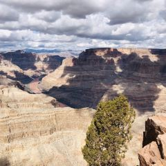 West Rim Skywalk User Photo