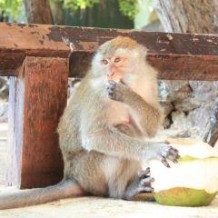Phra Nang Cave User Photo