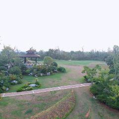 青嵐湖森林公園用戶圖片