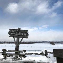 히츠지가오카 전망대 여행 사진