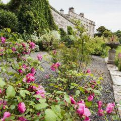 Dalemain Mansion & Historic Gardens用戶圖片