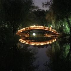 청양 세기 공원 여행 사진