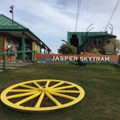 賈斯珀天空纜車用戶圖片