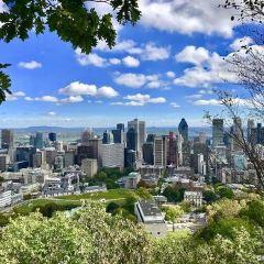 皇家山高地區用戶圖片