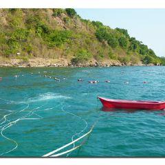 코팡안섬 여행 사진