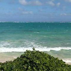 Sandy Beach User Photo