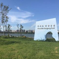 Youeido Han River Park User Photo