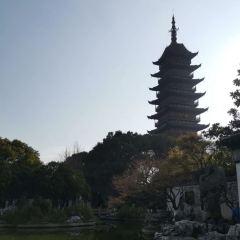 崇教興福寺塔用戶圖片