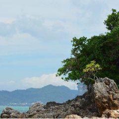 管子島用戶圖片