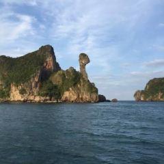 雞島用戶圖片