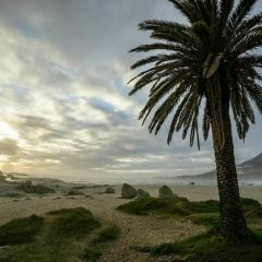 Camps Bay User Photo