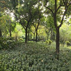 西天目林海農莊用戶圖片