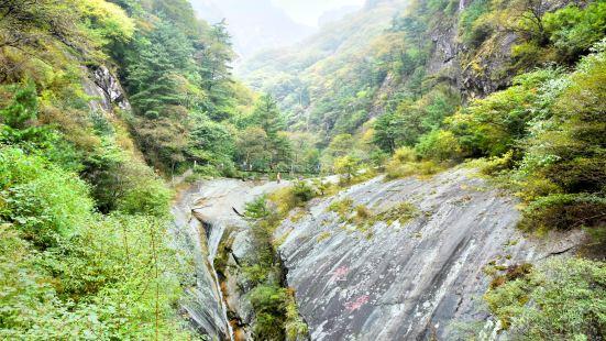 朱雀國家森林公園