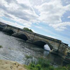 羅斯橋用戶圖片