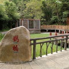 Guangdong Shenguangshan Forest Park User Photo