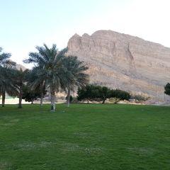 Green Mubazzarah User Photo