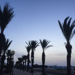 Hammamet Beach User Photo