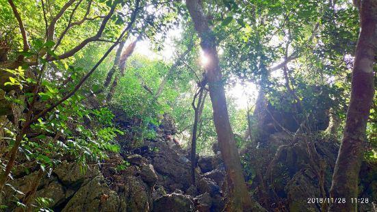 国家森林公园,环线徒步一周大概2小时,爬山全是坡路,门票四万