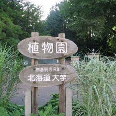 홋카이도 대학 부속 식물원 여행 사진