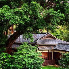 紀州庵文學森林用戶圖片