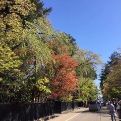 KAKUNODATE User Photo
