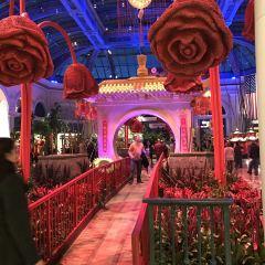 The Buffet at Bellagio用戶圖片