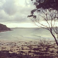 Noosa National Park User Photo