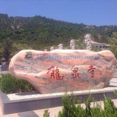 Longquan Temple User Photo