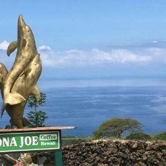 Kona Joe Coffee User Photo