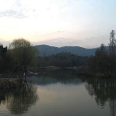 慈湖公園張用戶圖片