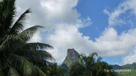 Tahiti Evasion