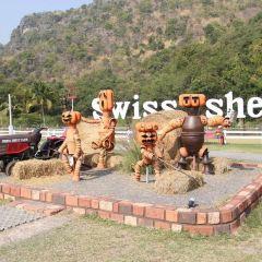 華欣瑞士綿羊牧場用戶圖片