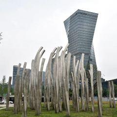 成都國際會展中心用戶圖片