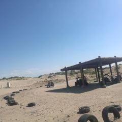 圖開沙漠用戶圖片