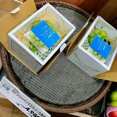 Uenofarm User Photo