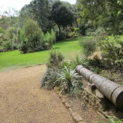 Botanical Garden User Photo